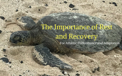 The Importance of Rest and Recovery for Athletic Performance and Adaptation